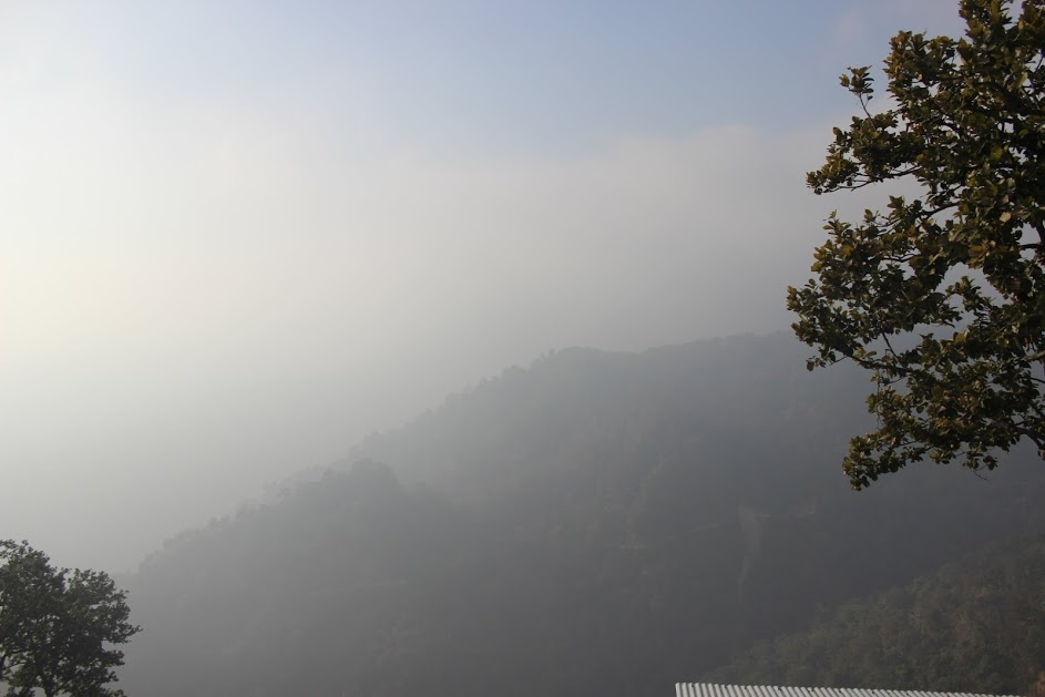 Purnagiri Devi Temple, levenstylo, Uttarakhand